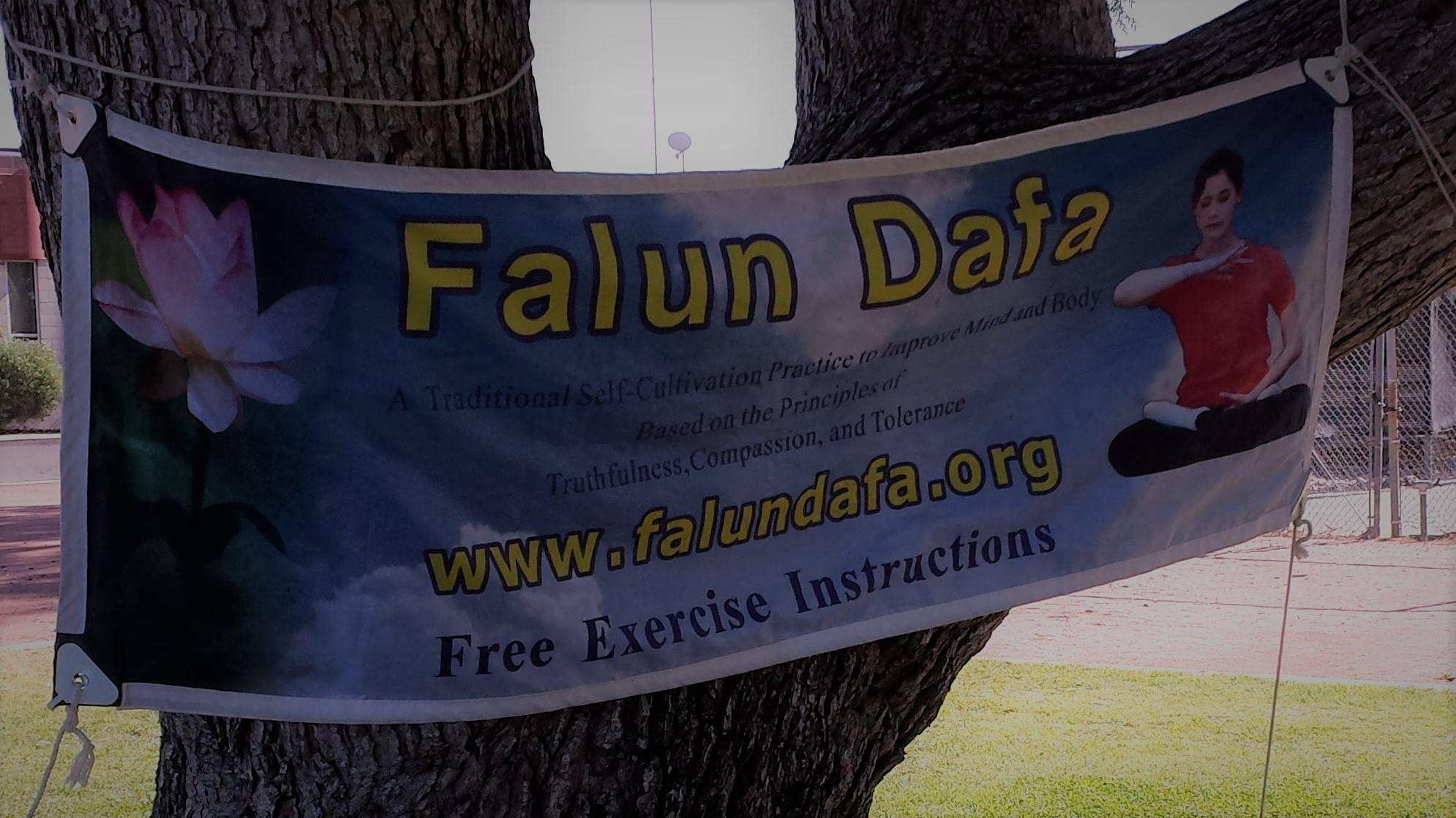 Falun Gong Free Exercise Instructions